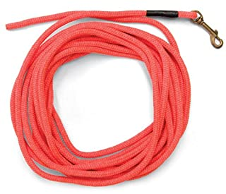SportDOG Brand Orange Check Cord - 30 Feet Long - Strong but Lightweight Training Tool - Highly Visible and Floats - SAC00-11746 (B001F0IJ9S) | Amazon Products