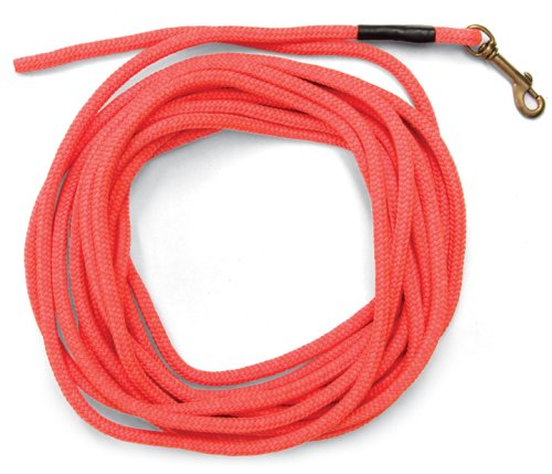 SportDOG Brand Orange Check Cord - 30 Feet Long - Strong but Lightweight Training Tool - Highly Visible and Floats - SAC00-11746 (10 Best Hunting Dogs)
