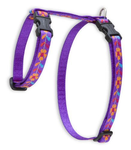 9-Inch to 14-Inch, 1 2-Inch Lupine H-style Pet Harness, 9-Inch to 14-Inch, 1 2-Inch, Spring Fling