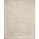 Safavieh Amherst Collection AMT422S Trigo y beige Alfombra de interior / exterior (10 'x 14')
