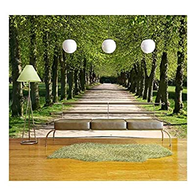 Green Path in a Forest - Removable Wall Mural | Self-Adhesive Large Wallpaper - 100x144 inches