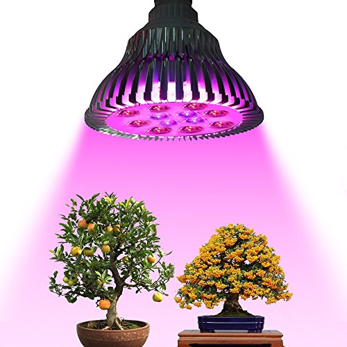 125 Watt Led Grow Light - 9