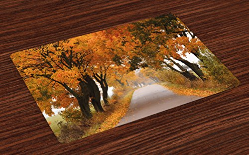 Ambesonne Fall Place Mats Set of 4, Fall Season in Poland Road with Colorful Vibrant Maple Trees Serenity Theme, Washable Fabric Placemats for Dining Room Kitchen Table Decor, Orange Brown Green - Fabric Maple Table