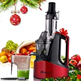 Homdox Slow Masticating Juicer, Juicer Extractor, Wide Chute Anti-Oxidation, Reverse Function with Juice Jug and Brush, High Nutrient Cold Press Juicer, Easy to Extract Fruit and Vegetable Juice