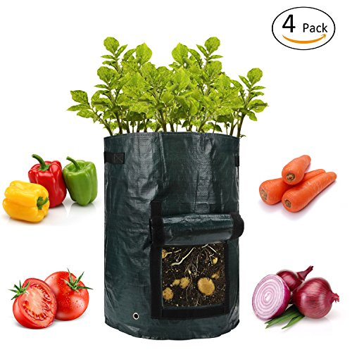 ANPHSIN 4 Pack 10 Gallon Garden Potato Grow Bags with Flap and Handles Aeration Fabric Pots Heavy Duty (Potato Bag Grow)