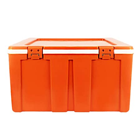 LIYANBWX - Nevera pasiva (60 L, Aislante, refrigerador y ...