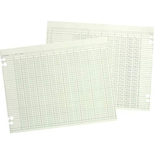 WLJG1016 - Wilson Jones Regular Ledger Sheets