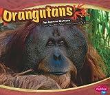 Orangutans, Joanne Mattern, 1429640308