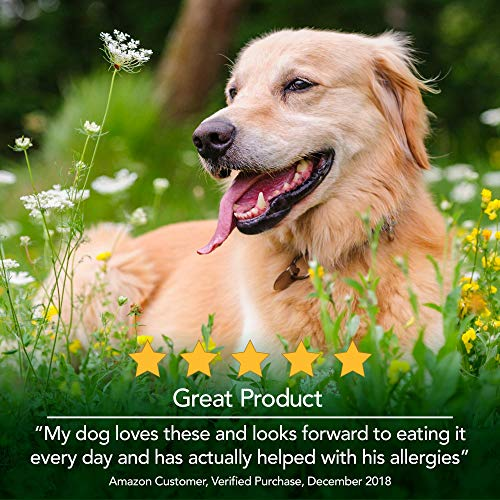 Vet's Best Seasonal Allergy Soft Chew Dog Supplements | Soothes Dogs Skin Irritation Due To Seasonal Allergies | 30 Day Supply