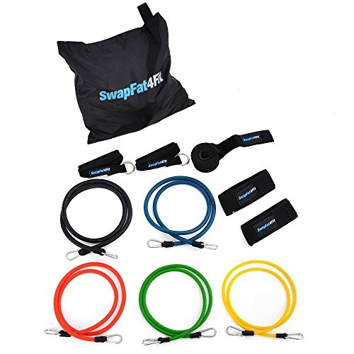 Exercise Bands Set: Resistance Bands with Handles, Door Anchor and Ankle Strap (11-piece set with Carry Bag)