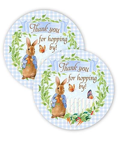 POP parties Peter Rabbit Party Favor Stickers - 40 Favor Bag Stickers - Peter Rabbit Party Thank You Tag - Peter Rabbit Party Supplies - Peter Rabbit Party Decorations - Stickers B]()
