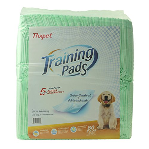 Thxpet Puppy Pads Super Absorbent Leak-Proof 80 Count Dog Pee Training Pads 22×23 inch Review