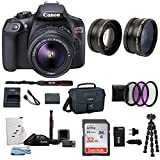 : Canon EOS Rebel T6 Digital Camera: 18 Megapixel 1080p HD Video DSLR Bundle With Wide Angle 18-55 MM Lens 32GB SD Card Mini Tripod Filter Kit & Charger - Professional Vlogging Sports and Action Cameras