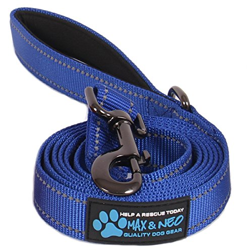 Nylon Dog Leash Nylon Collar - Max and Neo Reflective Nylon Dog Leash - We Donate a Leash to a Dog Rescue for Every Leash Sold (Blue, 4 FT x 1