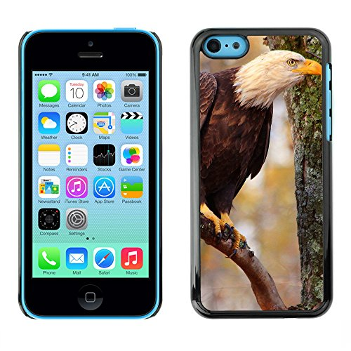 Premio Sottile Slim Cassa Custodia Case Cover Shell // F00010713 Aigle chauve // Apple iPhone 5C