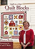 Quilt Block on American Barns (Quilt in a Day Series) [Hardcover] by Burns, E...