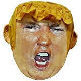 Pinatas Mr. President Donald Trump Pinata, Parody for Beating, Larger Than Life Head (17Inch)