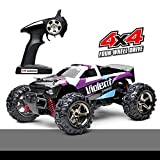 Fast Rc Cars, Demaxis Rtr Electric Remote Control Car 4x4 High Speed 32 mph Rc Buggy 1/24 Scale (Purple)
