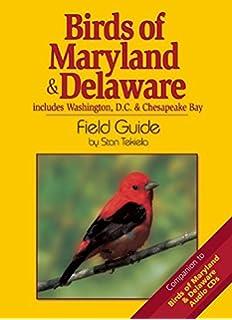 Mid-Atlantic Birds: Backyard Guide - Watching - Feeding