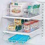 iDesign Plastic Refrigerator and Freezer Storage