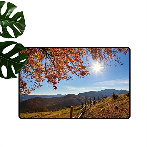 Anzhutwelve Fall,Personalized Door mats Fallen Leaves Over The Mountains Idyllic Fall Day Morning Sunrise Oak Tree Branches Indoor mat W 24