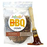 Edible Insects | BBQ Flavored Crickets