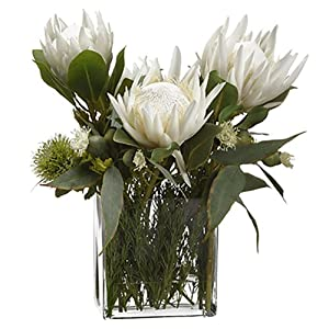 "21"" Hx21 W Protea, Rosemary & Wolly Silk Flower Arrangement -Cream/Green 106"