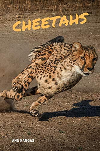 Cheetahs: Fun Facts for Kids eBook: Ann Kangas: Amazon ca