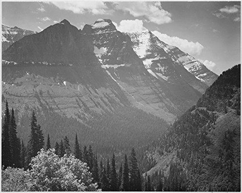 Valley snow covered mountains in background In Glacier National Park Montana 1933 - 1942 Poster Print by Ansel Adams (18 x 24)