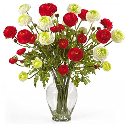 Amazon ranunculus liquid illusion flower arrangement red ranunculus liquid illusion flower arrangement redwhite 24quoth x 18quot mightylinksfo