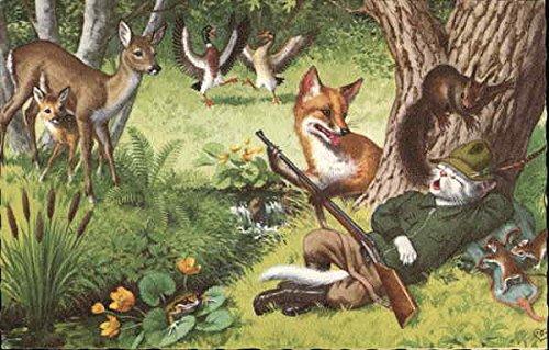 Cat Hunter Sleeping in Forest Dressed Animals Original Vintage Postcard from CardCow Vintage Postcards