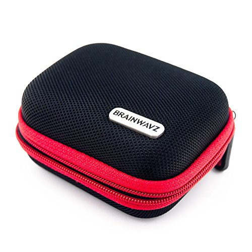 Brainwavz Hard Earphone Case - Suitable for Most Earphone ()