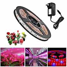 Topled Light® LED Plant Grow Strip Light with Power Adapter,Full Spectrum SMD 5050 Red Blue 4:1 Rope Light for Aquarium Greenhouse Hydroponic Pant Garden Flowers Veg Grow Light (2M)