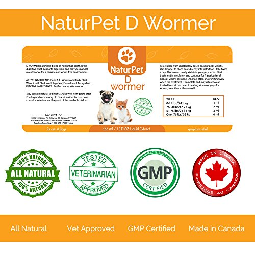 Best Cat Dewormer Do Over The Counter Options For Kittens