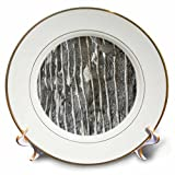 3dRose TDSwhite – Rock Photos - Layered Rock Stone Surface - 8 inch Porcelain Plate (cp_281893_1)