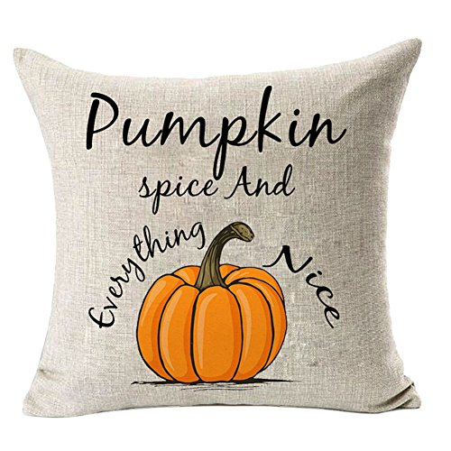 FAZHISHUN Fall Decor Cotton Linen Home Decorative Pumpkin Spice and Everything Nice Thanksgiving Day Throw Pillow Cover Cushion Cover for Sofa Couch,18