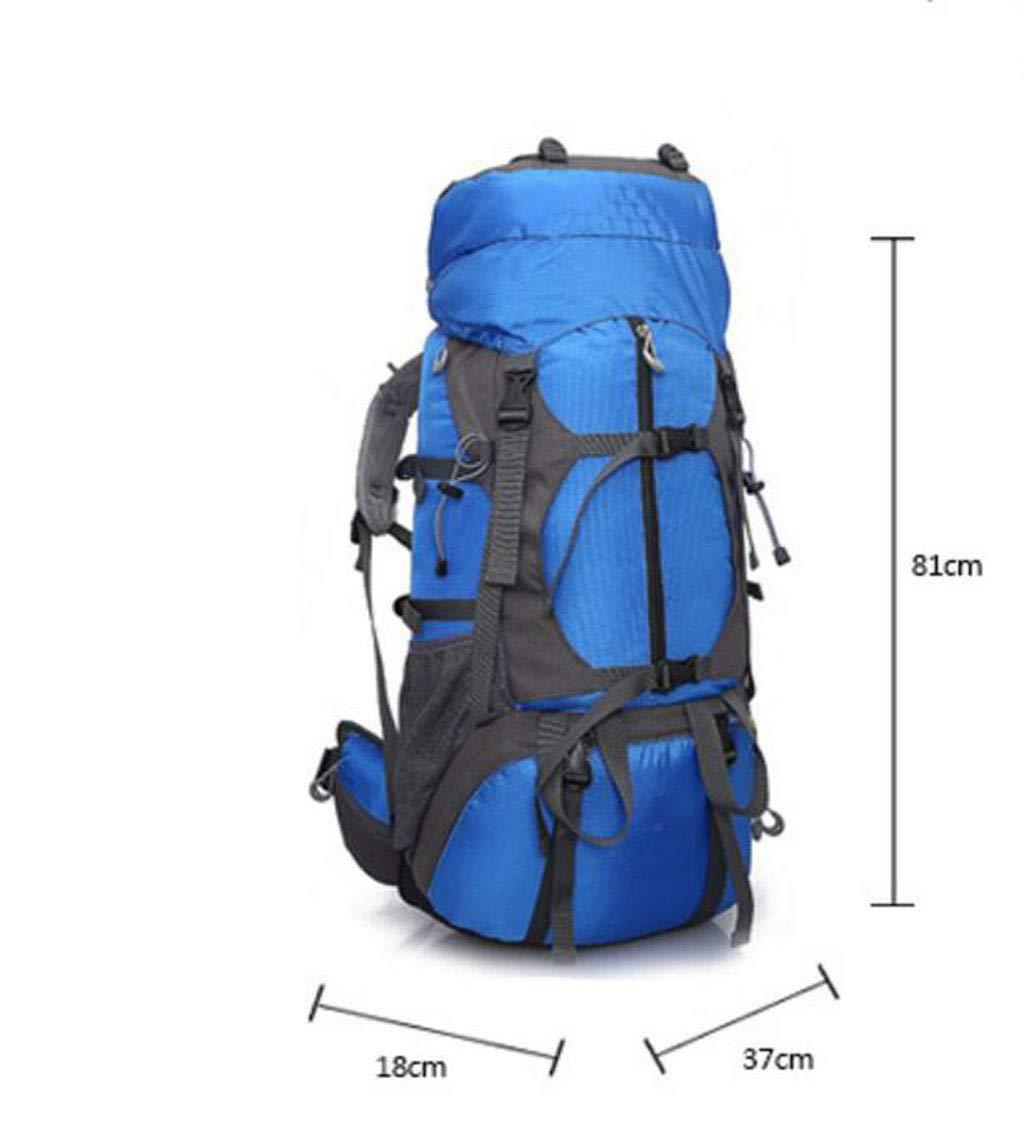 JSHFD JSHFD JSHFD Outdoor-Bergsporttasche, Rucksack, Wasserdicht und Tragbar, Reise-Wanderrucksack, 65L B07GFJ2M41 Daypacks Klassischer Stil e5c89c