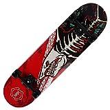 Amrgot Skateboards Pro 31 inches Complete Skateboards for Teens, Beginners, Girls,Boys,Kids,Adults (Shark)