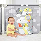 Skip Hop Baby Gate: Expandable or Wall Mounted