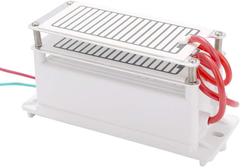 Festnight generador de ozono de cerámica portátil de 10 g/h con doble placa integrada, purificador de aire de agua para fábrica química: Amazon.es: Bricolaje y herramientas