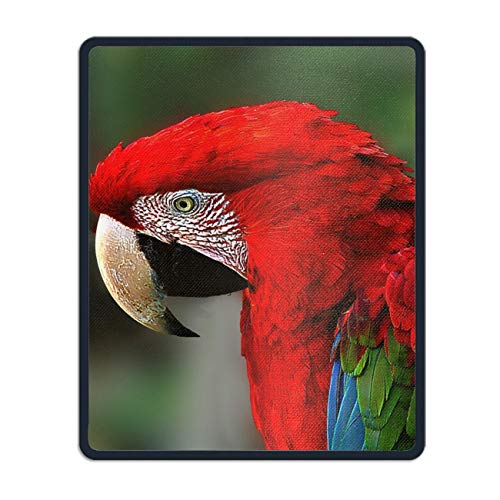 Animal Red Green Macaw Birds Custom Mouse Pad Non-Slip Rubber Gaming Mousepad Rectangle