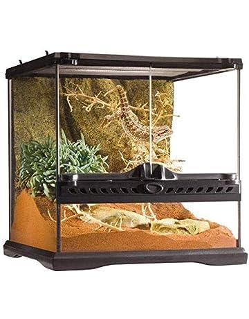 Snake Tank Coffee Table.Amazon Com Terrariums Reptiles Amphibians Pet Supplies
