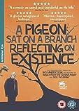 A Pigeon Sat on a Branch Reflecting on Existence ( En duva satt på en gren och funderade på tillvaron ) [ NON-USA FORMAT, PAL, Reg.2 Import - United Kingdom ]