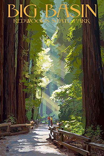 Big Basin Redwoods Park, California - Pathway in Trees (12x18 SIGNED Print Master Art Print w/Certificate of Authenticity - Wall Decor Travel Poster)