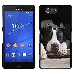 EJOY---Cubierta de la caja de protección para la piel dura ** Sony Xperia Z3 Compact ** --Boston Terrier Perro Negro Blanco
