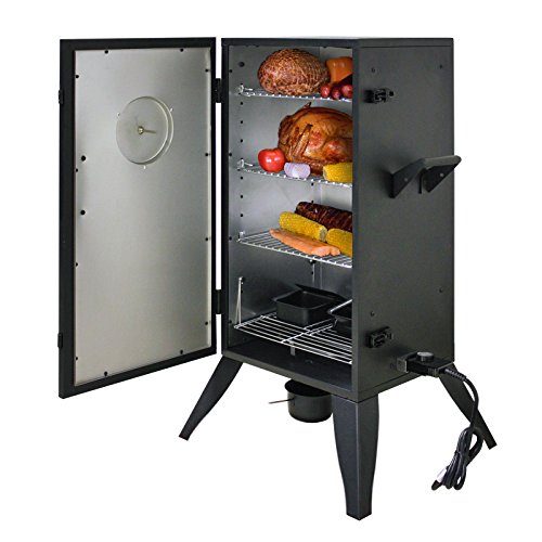 Electric Smokers Under $100