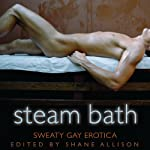 Steam Bath: Sweaty Gay Erotica | Shane Allison