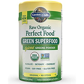 Kyolic kyo green energy powered drink mix 10 ounce health personal care for Garden of life raw protein and greens