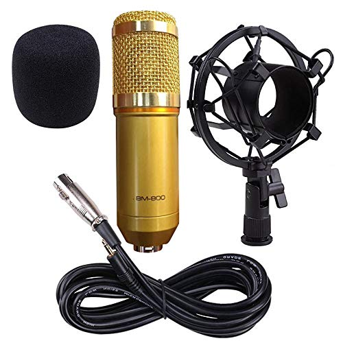 (RYGHEWE Professional Sound Studio Dynamic MicMoving Coil Dynamic Cardioid Condenser Pro Audio BM800 Microphone Gold)