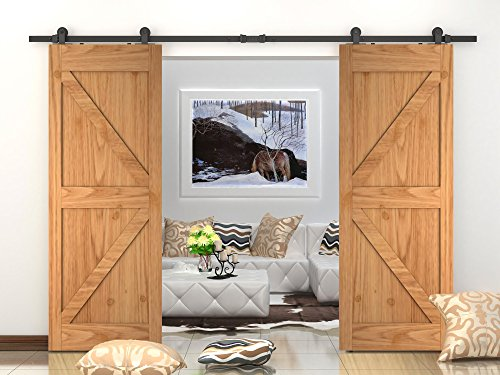 DIYHD 10FT Top Mount Double Sliding Barn Wood Door Interior Closet Door Sliding Door Track Hardware For 2 Door by DIYHD